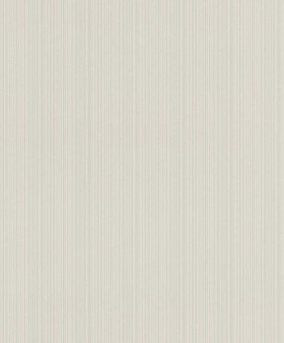 Non-woven wallpaper Rasch lines light grey 804126 online kaufen