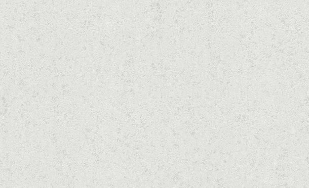 Wallpaper plaster texture grey white Erismann BasiXs 6493-01