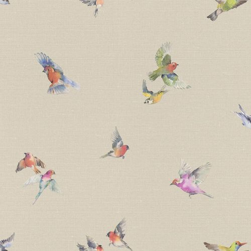 Non-woven Wallpaper Rasch Birds taupe colorful 401158