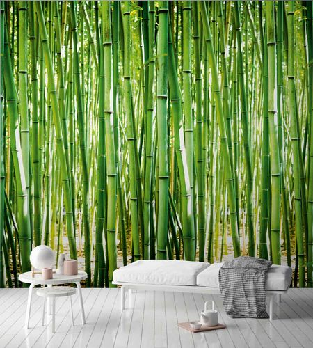 Non-Woven Digital Print Wallpaper bamboo floral | A36901