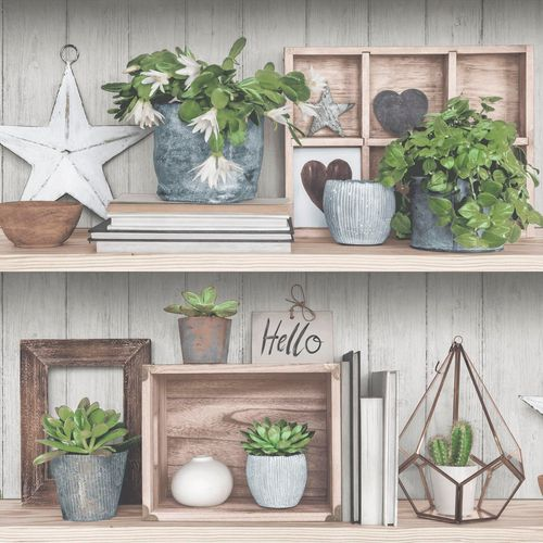 Non-Woven Wallpaper shelf plants grey brown EP3801 online kaufen