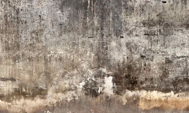 Digital Print Non-Woven Wall Mural Premium Basement Wall online kaufen