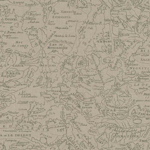 Vliestapete Rasch Weltkarte Geografie taupe Poetry 424522 online kaufen