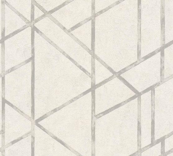 Vliestapete Beton Grafik cremeweiß grau Glanz 36928-5 online kaufen
