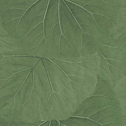 Non-Woven Wallpaper Leaves 3D Floral grey green 138995 online kaufen
