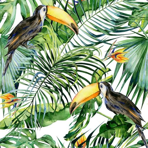 Photo Wallpaper Digital Jungle Toucan white DD116610 online kaufen