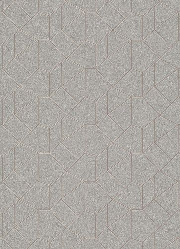 Graphic-Design non-woven wallpaper grey beige 10062-02