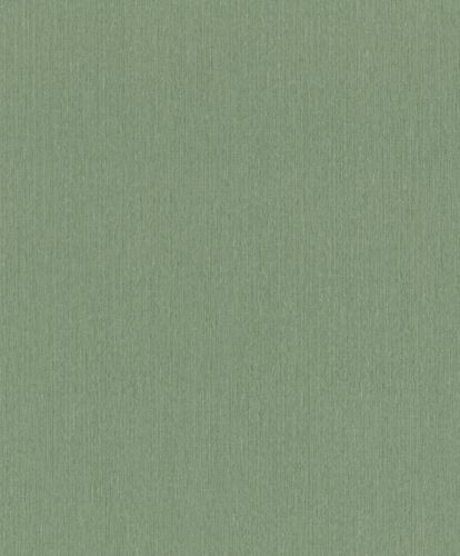 Non-woven Wallpaper Barbara HOME Plain green 537178 online kaufen