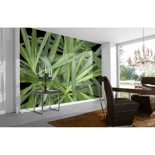 Photo Wallpaper Palm green AS Creation DD109150