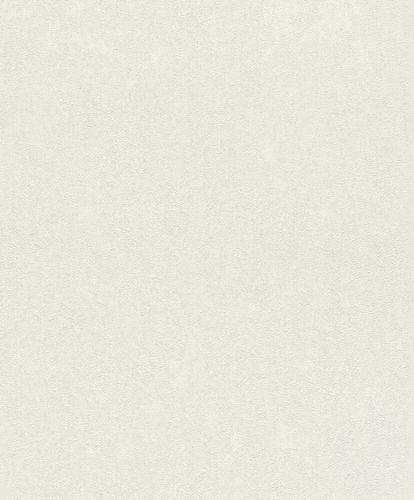 Non-Woven Wallpaper Rasch Plain Plaster white 617115