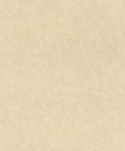 Non-Woven Wallpaper Rasch Plain Plaster brown 617344