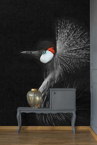 Fototapete Vlies Premium Kronen-Kranich Vogel schwarz