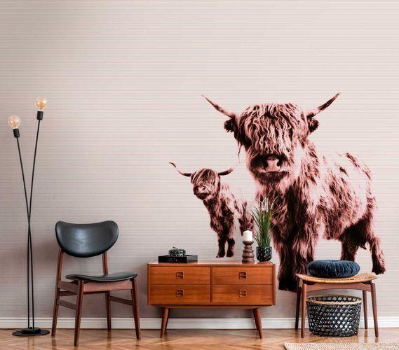 Fototapete Vlies Premium Hochland-Rinder Natur braun