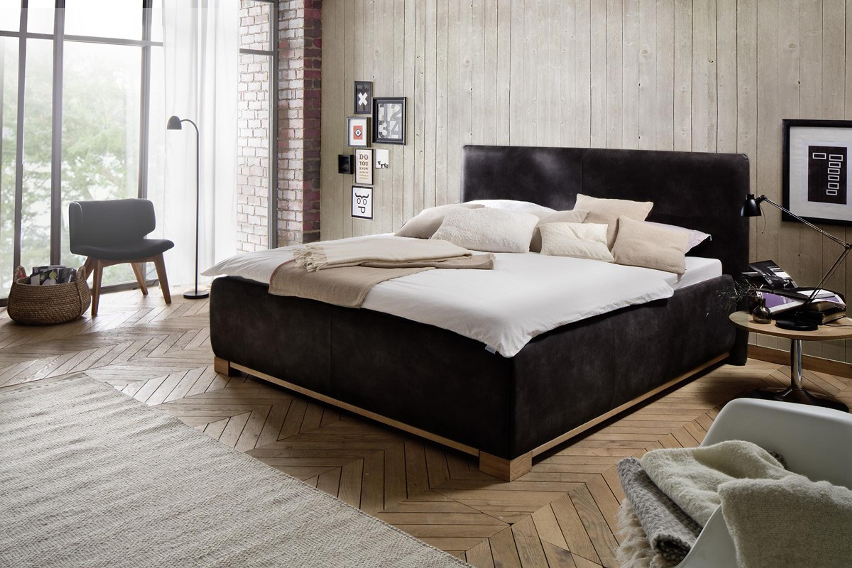 Polsterbett TABOO, in drei Farben Möbel Schlafzimmer Polsterbetten