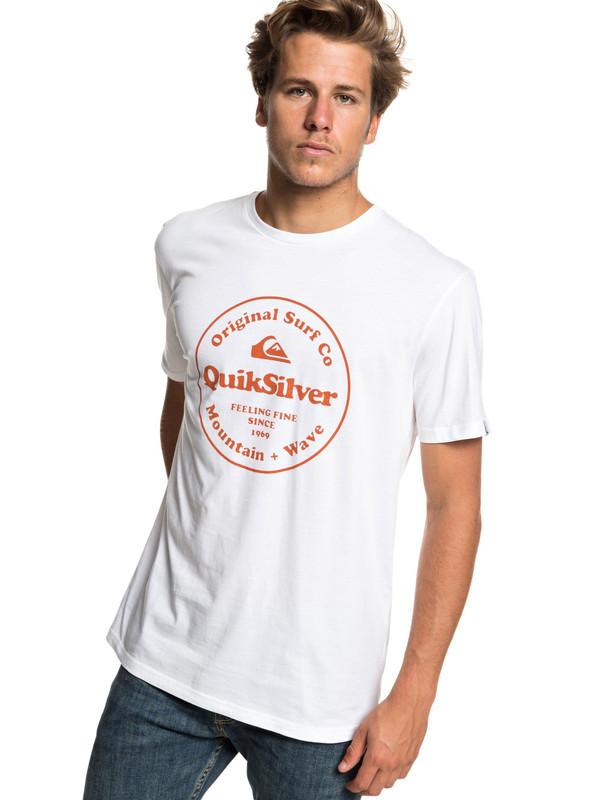 Quiksilver Herren T-Shirt Scrtingredienss M (White) 001