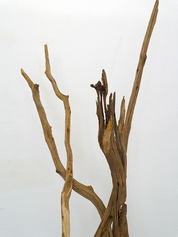 """Standleuchte Stehleuchte Stehlampe """"Totholz Collection Design"""" Eichenäste (5997) – Bild 4"""