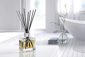 Parfumbouquet Set Cube Belebende Frische / Zitronen Verbene von Parfum Berger
