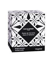 Duftkerze Linie grafisch-dekorativ Zeste de Verveine / Zitronen Verbene von Parfum Berger