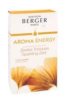 Parfumbouquet AROMA ENERGY von Maison Berger