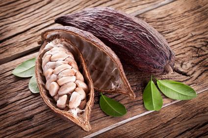 Frucht zur Kakaoherstellung