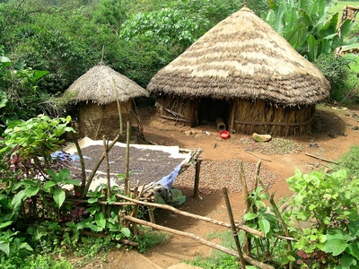 Die Kaffee-Anbauregionen