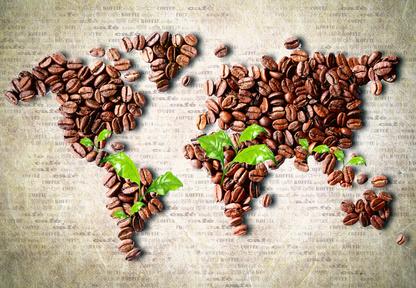 Wirtschaftswunder Kaffee