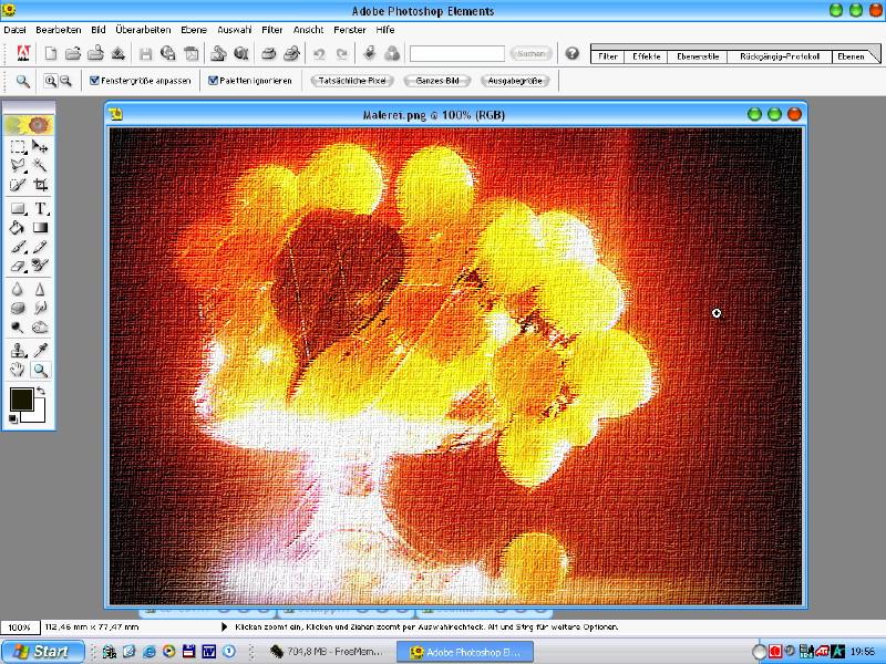 Adobe Photoshop Elements Basiskurs – Bild 4