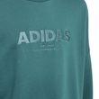 adidas Kinder Pullover Sweatshirt Allcaps Sweat grün Bild 4