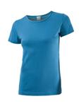 BvB T-Shirt petrol 001