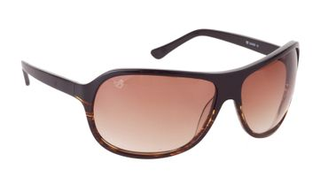 Kadee Sunglasses