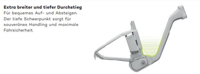 E-Bike Flyer Gotour5 7.00 Tief L 55 cm schwarz DI2 900 km 15 AH  – Bild 6