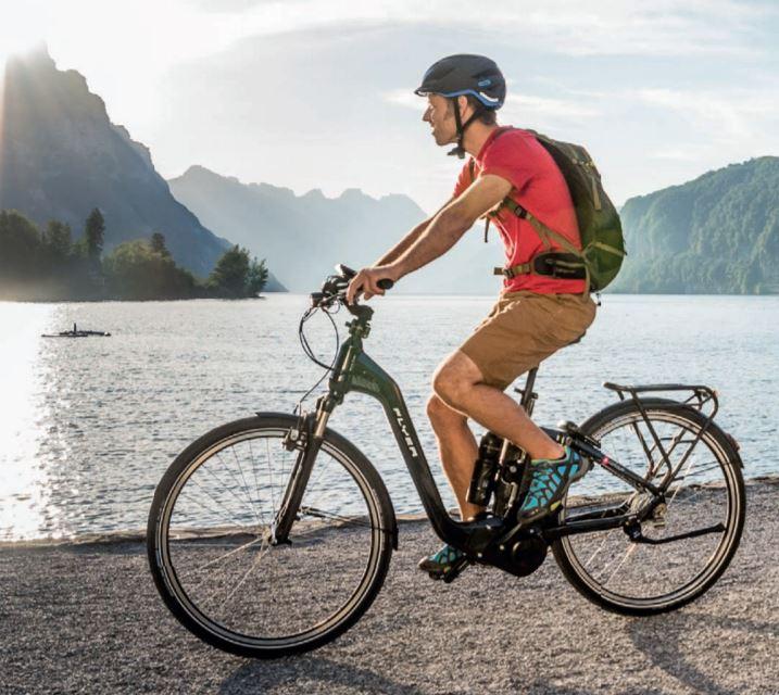 E-Bike Flyer Gotour5 7.00 Tief L 55 cm schwarz DI2 900 km 15 AH  – Bild 7
