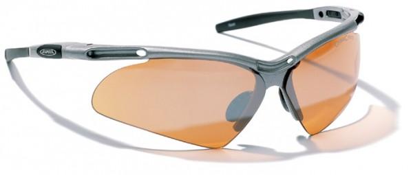 Sportbrille Alpina Guard 40