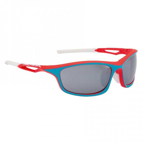 Sportbrille Alpina SORCERY CM+ – Bild 1
