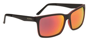 Sportbrille Alpina Don Hugo  – Bild 3