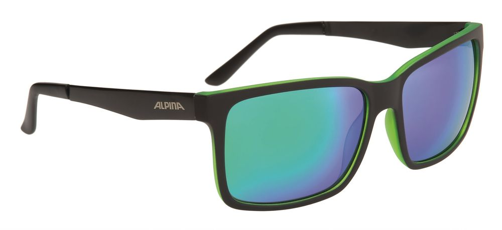 Sportbrille Alpina Don Hugo