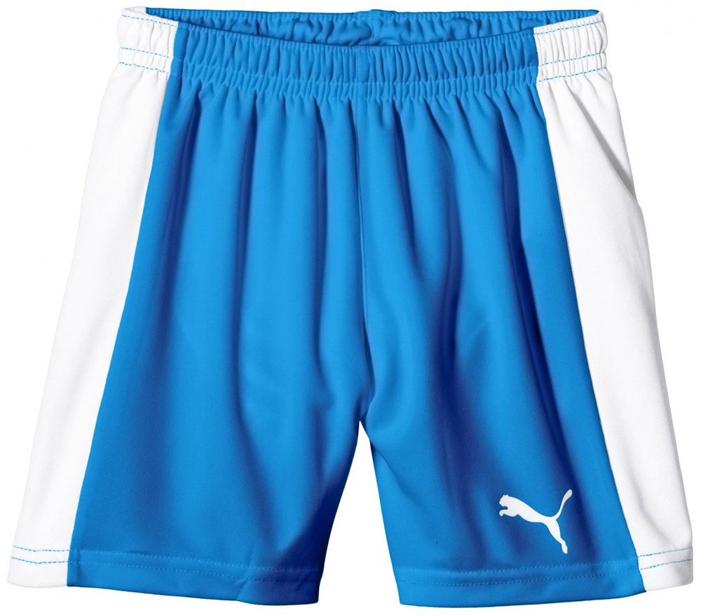 Puma Pitch Shorts WithInnerbrie - puma royal-white