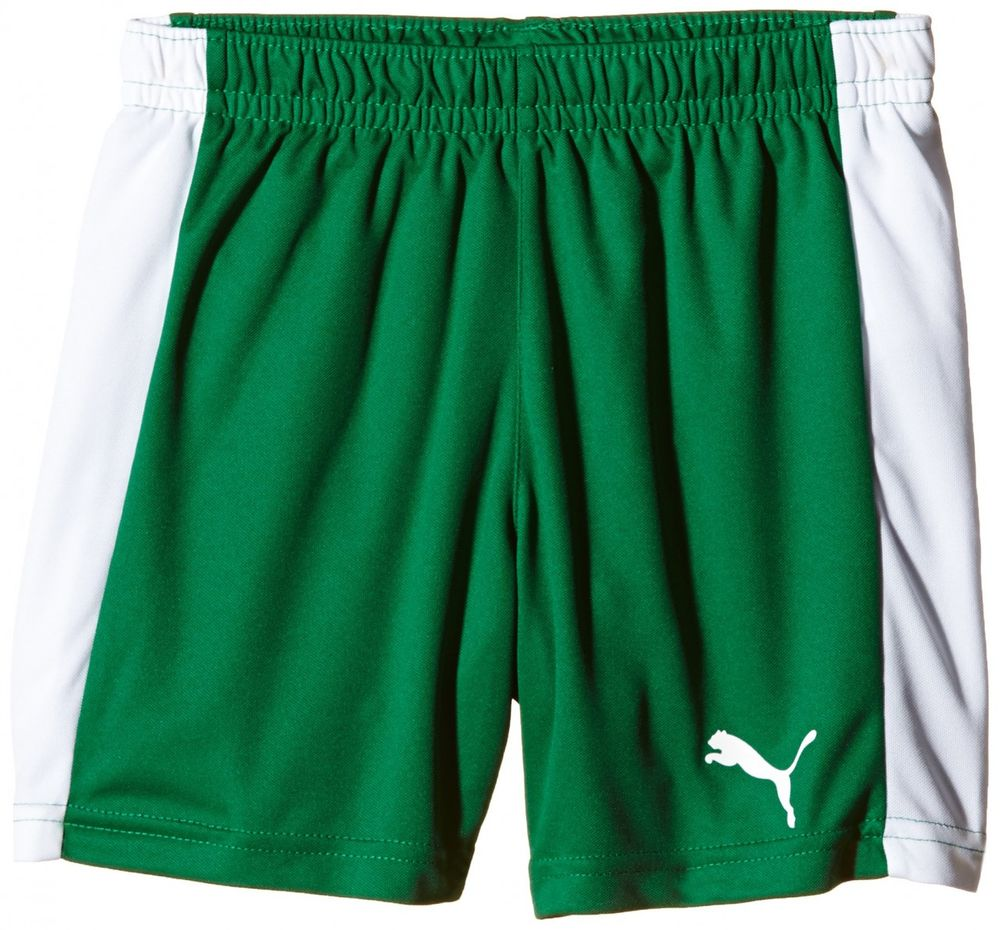Puma Pitch Shorts Withinnerbrie - power green-white