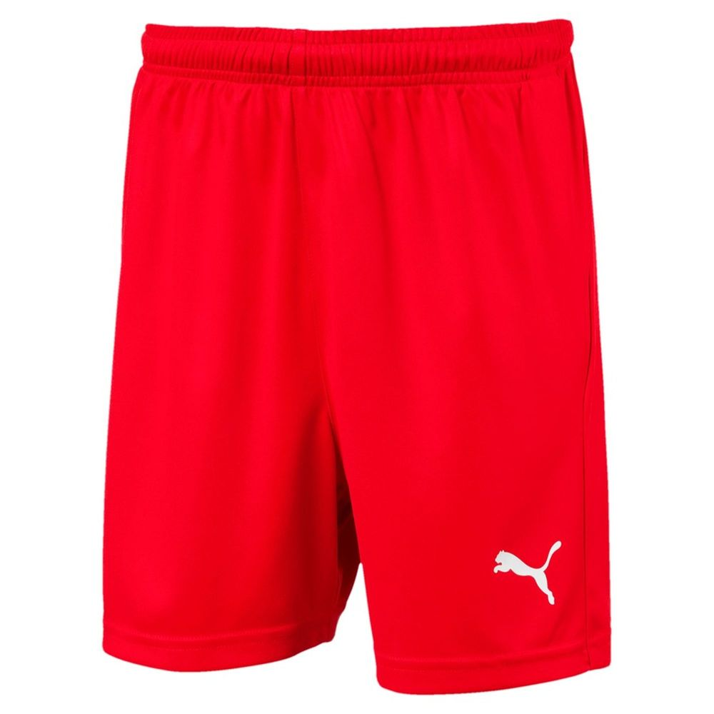 Puma Kinder Fußballshorts LIGA Shorts Core w Brief Jr