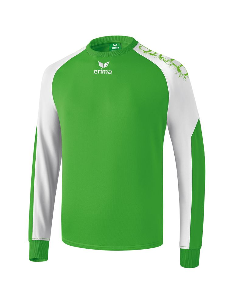 Erima Graffic 5-C Sweatshirt - green/white - Torwarttrikots-Herren