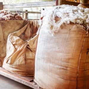 Trocknerbälle aus Schafwolle