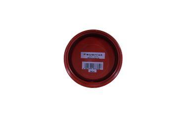 (10,50€/L) Alpina 2x500 ml Premiumlack 2in1, Glänzend, Schadstoffarm, Farbwahl – Bild 16