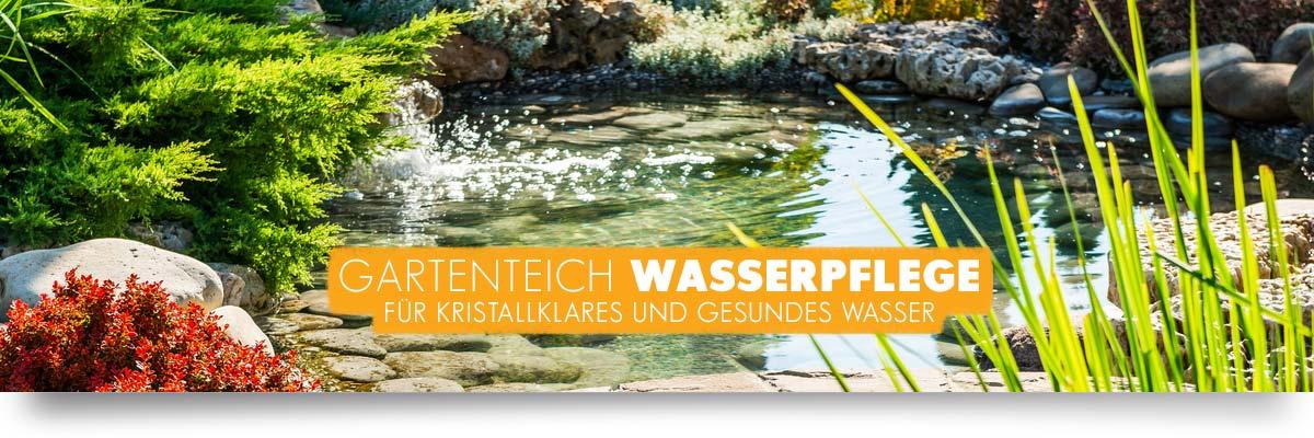 AQUAbasics Wasserpflege für Ihren Gartenteich