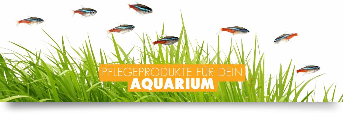 aquabasics Aquarium Pflege-Produkte