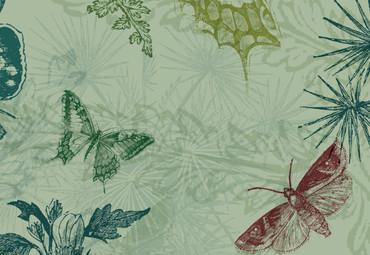 Papier Fototapete Collage Schmetterlinge & Pflanzen 368x254cm – Bild 3