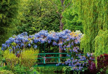 Vlies Fototapete Monets Garten in Frankreich 368x254cm – Bild 3