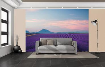 Vlies Fototapete Provence Frankreich 368x254cm – Bild 2