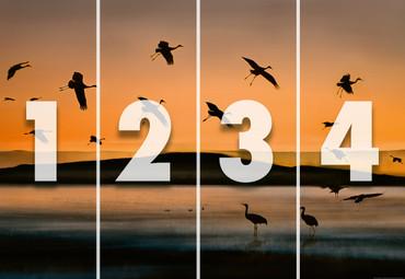 Vlies Fototapete Vögel bei Sonnenuntergang 368x254cm – Bild 4