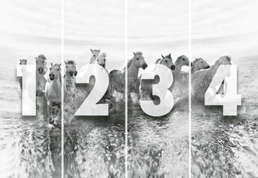 Wall Mural White Horses Non-Woven 368x254cm – Bild 4