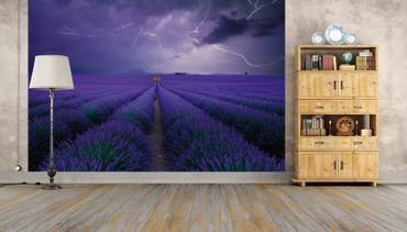 Vlies Fototapete Lavendelfeld 368x254cm – Bild 2
